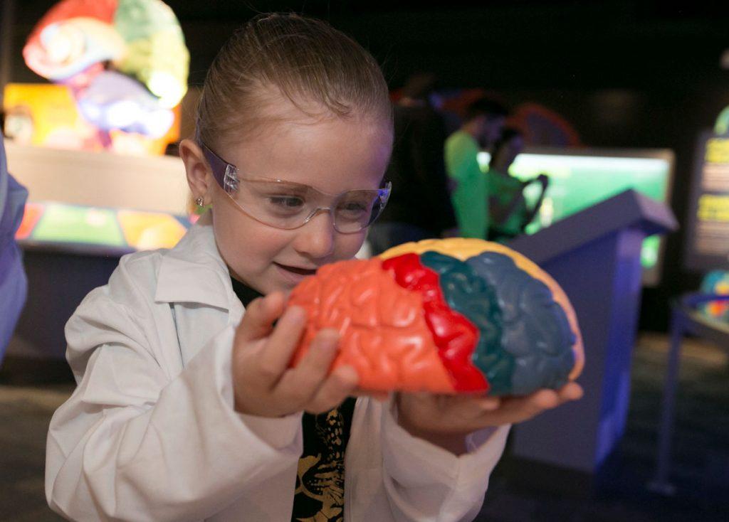 FAU Brain Institute Child Visitor