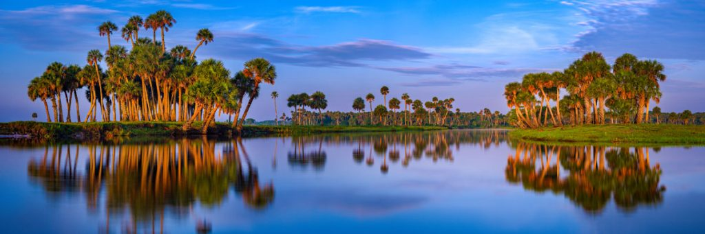 St. Johns River Rise, Central Florida, Richard Auger