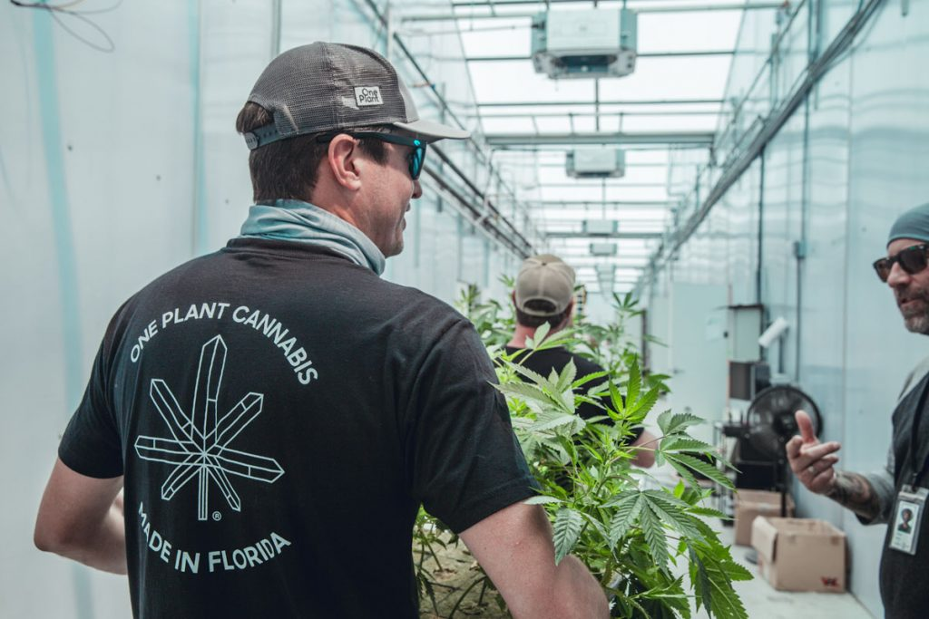 """Cobb calls his One Plant greenhouse staff a """"dream team of cannabis cultivators and purists"""""""