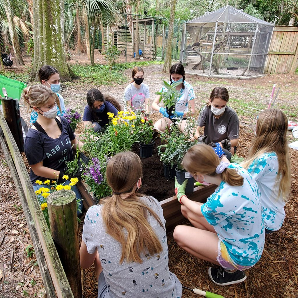 Jupiter Tequesta Juniorettes planting a butterfly garden at the sanctuary