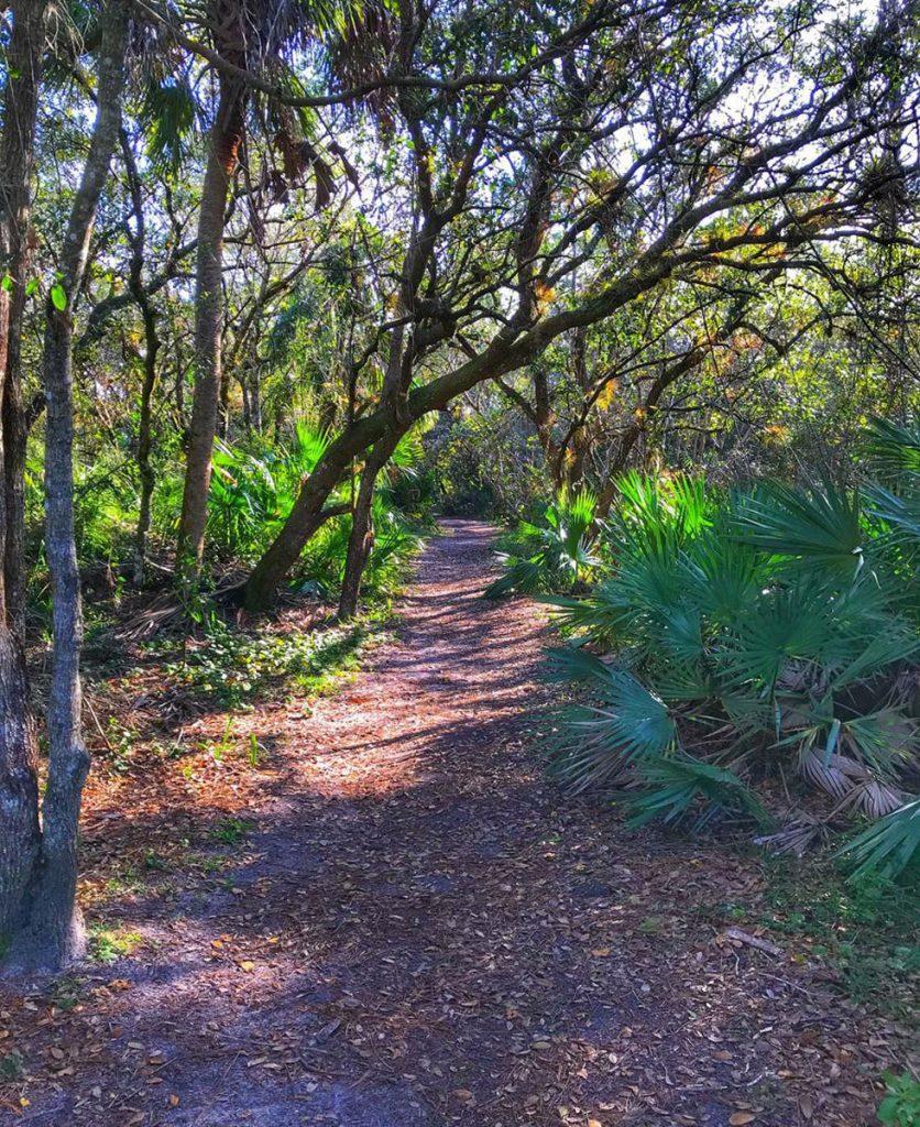 Explore nature trails at Halpatiokee Regional Park in Stuart. Photo courtesy Martin County Office of Tourism & Marketing