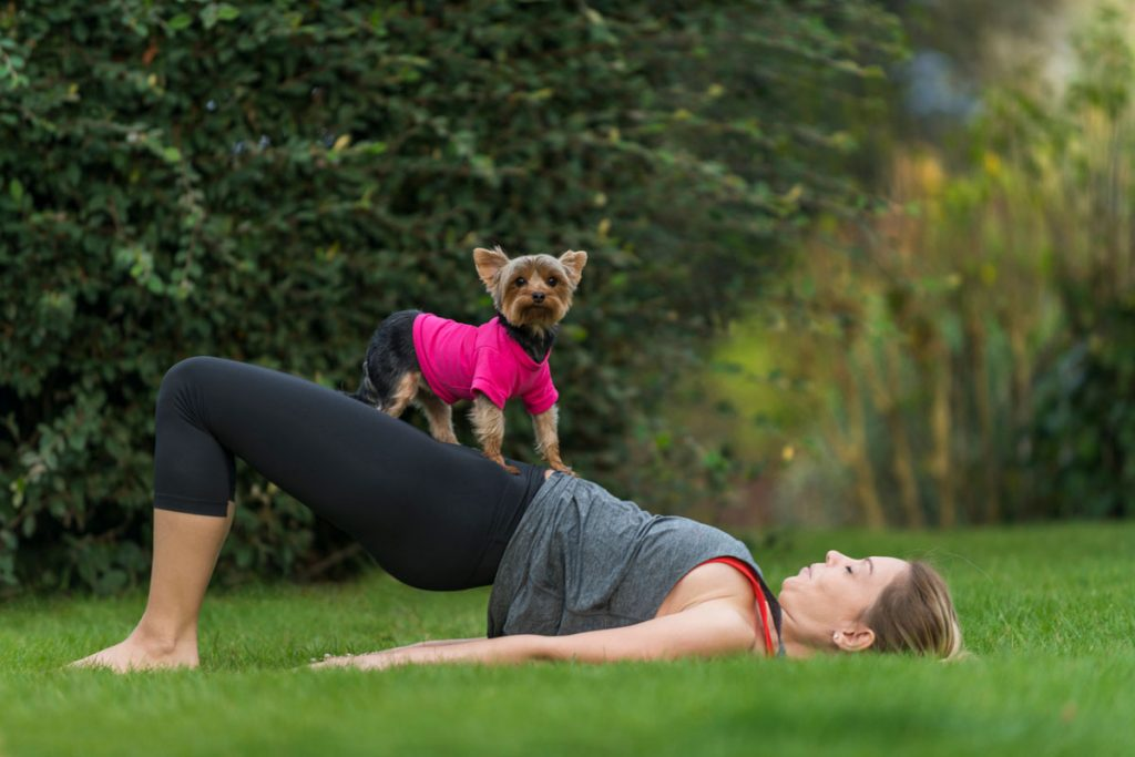 Take a yoga class with your dog.